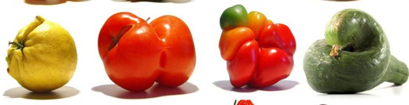 <div style='color: #000;'>Minder dan 0,5 % van verspild voedsel</div><div style='color: #d9782d;'>bereikt ons</div>